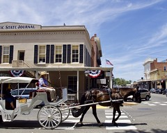 Another Working Horse (_thao) Tags: sacramento oldsacramento western oldwest horses horsecarriage