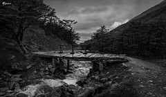 Bridge towards the Marcial Glacier (alberana) Tags: argentina america southamerica ushuaia bridge andes patagonia river stones waterfall blackandwhite landscape mountains trees martial glacier glaciermartial trekking path way clouds outdoor wooden broken