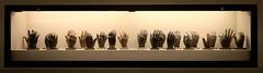 22 - Portrait (Hands) (ethnosax) Tags: dallas tx texas dfw metroplex urban city family sightseeing adrianflatthandmuseum baylorhospital bronze casts dogwood52
