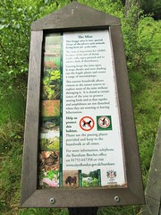 IMG_2043 (belight7) Tags: burnham beeches uk england information board boo marsh