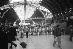 Paddington Station (ifleming) Tags: streetphotography kodaktrix400 kodakxtol olympusxa2 paddingtonstation