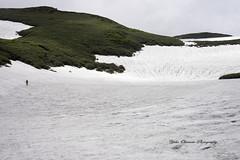 鳥海山への道 (yoko.wannwannmaru) Tags: dsc0020 鳥海山 雪渓 山 雪 登山
