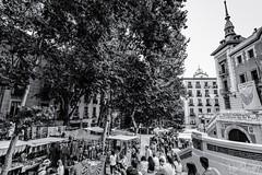 El Rastro de Madrid (profesorxproyect) Tags: d7100 nikon 1116 tokinaatx1116 byn blackandwhite blancoynegro bw bn callejera city ciudad madrid centrodemadrid centro rastro angular