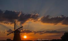 Monday evening sunset (katrinchen59) Tags: sunset sundown sunrays clouds windmill horizon silhouette evevingsky eveningsun beautifulsky skyphotography sonnenuntergang abendrot horizont hollandmühle abendsonne wolken sonnenstrahlen zonsondergang avondhemel molen zonnestralen hollandseluchten