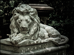 Eternal Guardian (Darren Wilkin) Tags: abneypark london cemetery memorial lion statue grave marble