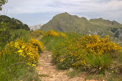 Single track (Rael1959) Tags: landscape mountains tuscany apuane hicking