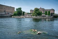 Stockholms Medeltidsmuseum // Trip to Sweden (Merlijn Hoek) Tags: stockholm trip city holliday vacation
