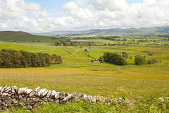 Cumbrian Landscape (Adam Swaine) Tags: county uk trees england english beautiful rural canon countryside britain hills cumbria fields british stonewall walls northeast pennines counties 2019 englishlandscapes adamswaine ukcounties aonb
