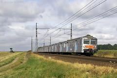 Z 5300 entre Gazeran et Rambouillet (Alexoum) Tags: sncf ter chartres rambouillet paris z5300 banlieue train