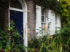 City Garden (davepickettphotographer) Tags: cambridgeshire cambridge cityofcambridge uk eastanglia eastern england eastofengland city