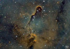 Trunk Nebula (cristianfanel@ymail.com) Tags: trunknebula ic1396 stars rc8 skywatcher azeq6 narrowband halpha