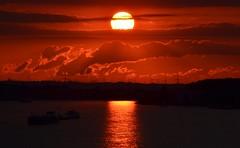 Bonn (fchmksfkcb) Tags: bonn sunset sonnenuntergang rhine rhein deutschland germany