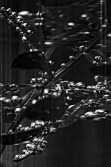 Bubbles (chipdetty) Tags: blackandwhite bw bnw waldmeister wasser airbubbles bubbles luftblasen