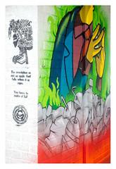 Revolutionary art (leo.roos) Tags: lens nl graffi grafitti 1958 graphiti graphitti a7 kmz m39 darosa helios44582 russianlenses sovietglass leoroos streetart graffiti shoppingcentre wallart demolition shoppingmall sloop kijkduin winkelcentrum muurschildering straatkunst muralism thsa thehaguestreetart