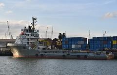 Bear (Hugo Sluimer) Tags: haven havenfotografie havenfoto harbour harbourphoto harbourphotography nederland zuidholland holland nikon nikond500 d500 onzehaven portofrotterdam port