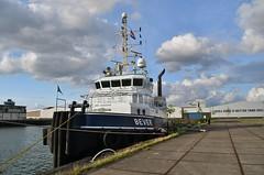 Bever (Hugo Sluimer) Tags: haven havenfotografie havenfoto harbour harbourphoto harbourphotography nederland zuidholland holland nikon nikond500 d500 onzehaven portofrotterdam port