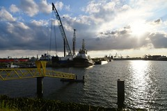 Waalhaven (Hugo Sluimer) Tags: haven havenfotografie havenfoto harbour harbourphoto harbourphotography nederland zuidholland holland nikon nikond500 d500 onzehaven portofrotterdam port