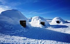 igloos (afafa02) Tags: igloo winter alps alpes plagne neige snow