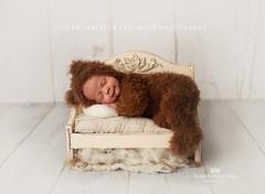5 weeksmos _02 (Kimberly Kauffman) Tags: studio newborn 1monthold 5weeksold coverbaby june2019 kimberlykauffmanphotography