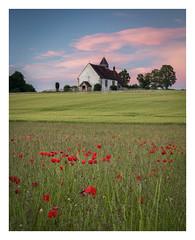 Sunset Poppies (keety uk) Tags: hampshire idsworth photokeetynet portsmouth sthubertschurch wwwkeetynet keety
