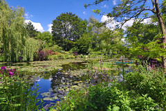 28250 Jardins de Giverny 17/06/2019 Bassin aux nymphéas (ChrisDeno92) Tags: jardin giverny claude monet