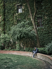 Give me some space... (Calvin J.) Tags: streetphotography candid negativespace green foliage park reallyniceimages rni canon 5dmarkiii ef35mmf14l primelens toronto ontario torontosculpturegarden melancholy alone peaceful ivy solitude minimalist minimalism