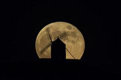 DSC_4538_1 (Jesus DTT) Tags: silueta siluetas molino molinodeviento consuegra lunallena luna cerrocalderico castillalamancha photopills clavileño gigantes quijote quixote cervantes dulcinea
