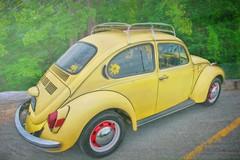 VW Beetle (jta1950) Tags: car auto automobile voiture vw yellow texture trees