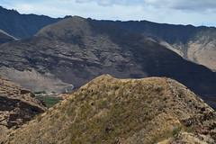 DSC33_27820 (heartinhawaii) Tags: maili puuohulu landscape mountainscape pillboxhike waianaepillbox waianaehiking waianaemountains westsidepillbox waianae oahu hike hiking westoahu hawaii nikond3300