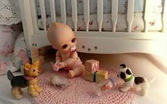 Molly Rose (TutuBella) Tags: nappychoo mollyrose daisydayes puppies shannonslilcritters toys babybottles nursery baby pacifier crib soom tinybjd