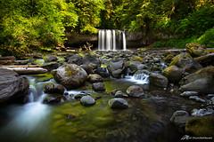 Oregon Summers, Upper Butte Creek Falls (Matt Straite Photography) Tags: water river stream nature landscape outdoor tripod wet flow green reflection oregon