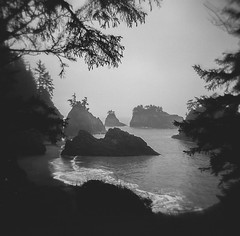 Secret Beach Holga (jim peterson2012) Tags: holga120n tmax400 secretbeach oregoncoast labdeveloped ddx