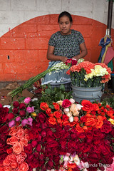 Woman selling roses in market. (brendatharp) Tags: guatemala market antigua centralamerica shop outdoor cultural destination roses culture adventure latin travel woman marketplace guatemalan traveldestination person central carnations female