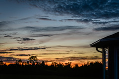 """Chasing the light (Robin Penrose) Tags: 201906 sunset light monday skies wesward tree line home reflection countryliving canada """"project365"""" 365the2019edition 3652019 day168365 17jun19"""