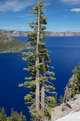 AU3A2622 (MegachromeImages) Tags: crater lake national park or oregon volcano water