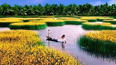 Ngành nông nghiệp xuất khẩu đạt gần 20 tỷ USD- VnEconomy (Citi RealEstate) Tags: ngành nông nghiệp xuất khẩu đạt gần 20 tỷ usd vneconomy