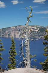 AU3A2620 (MegachromeImages) Tags: crater lake national park or oregon volcano water