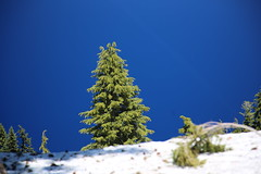 AU3A2464 (MegachromeImages) Tags: crater lake national park or oregon volcano water