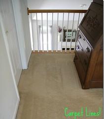 best-robot-vacuum-for-pet-hair-and-carpet-and-hardwood (edwardmorrison0910) Tags: robot vacuum for pet hair carpet hardwood floors