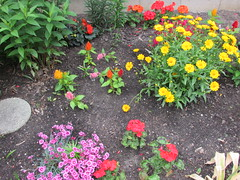 Garden (creed_400) Tags: grand rapids west michigan june spring flowers