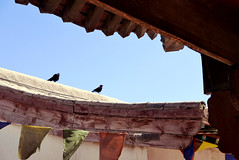 Dolma Ling/4 (Cath Forrest) Tags: mongolia ulaanbaatar religion buddhist temple roof prayerflags sky birds