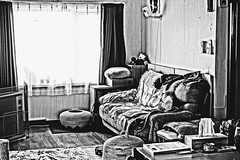 Argent Hiding in Grayscale Sight (sjrankin) Tags: 18june2019 edited kitahiroshima hokkaido japan argent tunic livingroom couch floor grayscale window curtains mat heater table cathouse