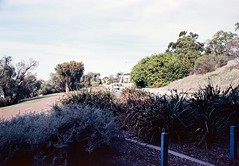 EKTAR 100 110619-018 (brett.m.johnson) Tags: ektar100mthenryfremantlesouthmolejune2019c41 fremantle mthenry bridge canningriver westernaustralia perth exktar 100 c41 processingtank