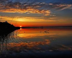 Solbjerg lake (SonyLeo) Tags: sonyfe24105mmf4goss fe24105mmf4goss sonyilce7m2 sonya7m2