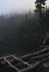 Buckhorn Lake (gmolteni) Tags: lake alpine mountain mountains fog mist pnw washington olympics national park hiking