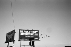 BW (susan catherine) Tags: blackwhite film leica m6 35mm losangeles blackfriday crows billboard spiderman