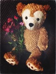 HTBT (f l a m i n g o) Tags: name friend flowers face heart ears mickey cute friends special group gift duffy teddybear