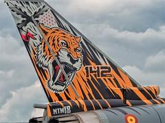Special Tail Mark - Tiger Meeting  (NTM18) - Spanish Air Force Eurofighter - Volkel - NL (Frans Berkelaar) Tags: volkelmilitaryairbase noordbrabant nederland specialtail spanishairforce eurofighter volkel nl ntm18 tigermeeting eurofightertyphoons