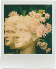 polaroid1950 (www.cjo.info) Tags: bloomsbury britishmuseum england europe europeanunion fujifilm fujifilmxe1 instantlab london polaroid polaroidoriginals stoneflowers theimpossibleproject unitedkingdom westerneurope xmount xfmount analogue art beard bust digital doubleexposure face facialhair film flora flower head itype itypecolor integral male man multipleexposure people plant sculpture statue