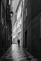 urban life (Francisco (PortoPortugal)) Tags: 1132019 20190611fpbo9472 monochrome monocromático pretoebranco blackandwhite bw nb pb street rua pessoas people lights shadows porto portugal